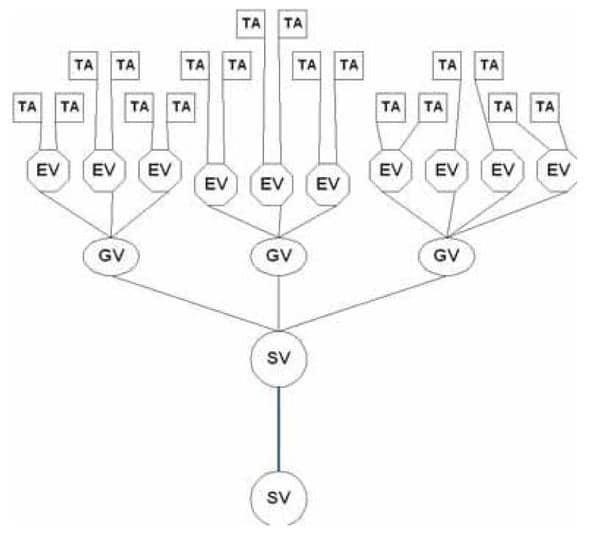 strukturierte verkabelung von netzwerken  u203a professional system