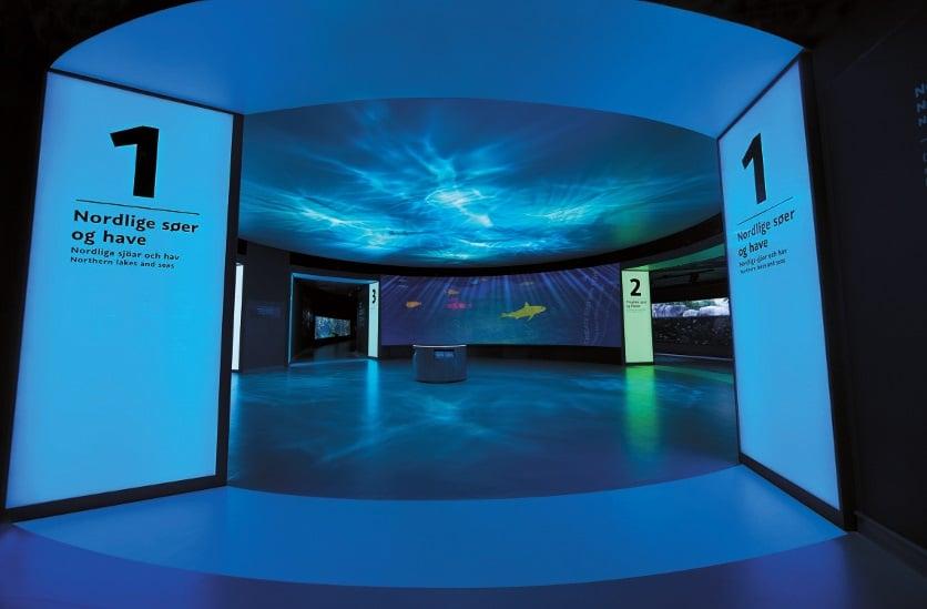 Farblich kodierte Lichttore weisen den Weg durch die Ausstellung