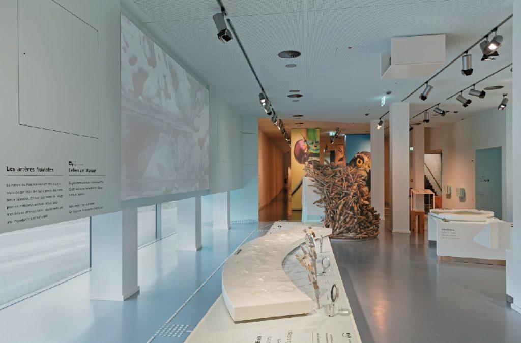 Unter der Projektionsfläche in Raum 2 gibt es den freien Blick auf das Außengelände – für die Projektion ist das nicht ganz unproblematisch.