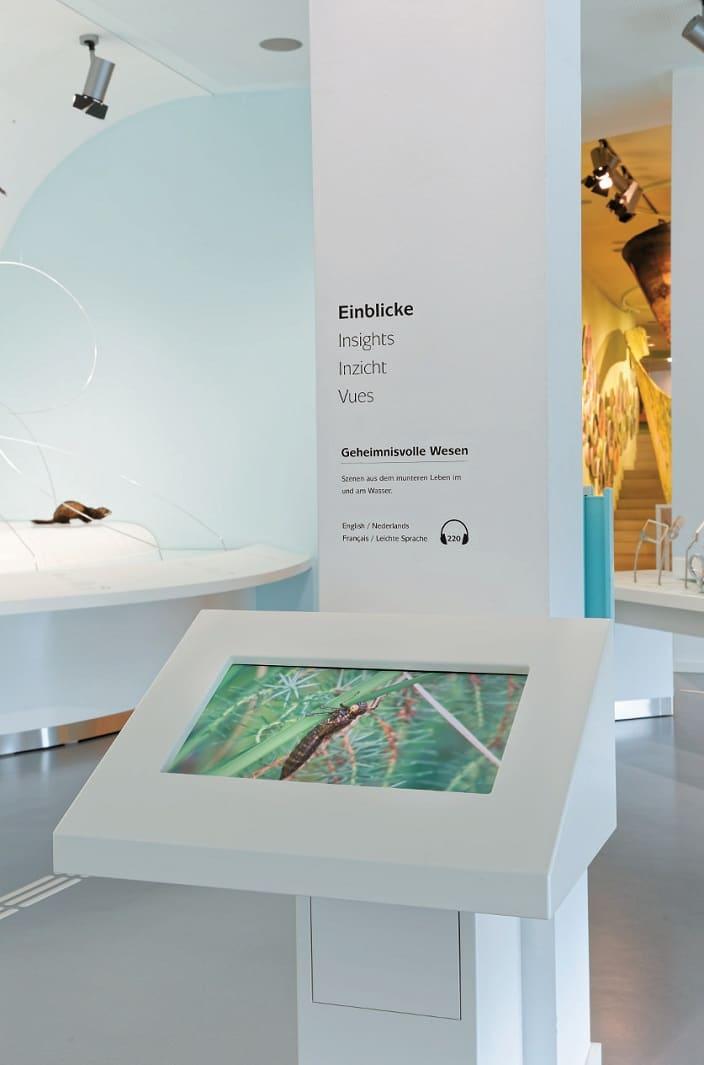 """Ein auf Hüfthöhe an einer Säule angebrachter Screen ist in Raum 2 mit """"Einblicke – Geheimnisvolle Wesen"""" betitelt."""