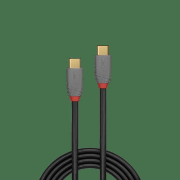 Anthra Line Lindy USB-C-Kabel mit USB-3.1-Spezifikation